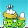 Heo xanh trộm trứng