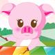 Âm nhạc của lợn con