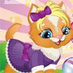 Làm đẹp mèo cưng