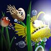 Cá điện phiêu lưu