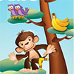 Khỉ con nhảy cao 2