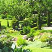 Vườn thượng uyển