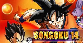 Songoku 14