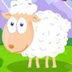 Thức ăn cho cừu