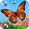 Bươm bướm bay