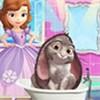 Sofia chăm sóc thỏ