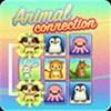 Kết nối động vật online