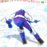 Ski Slalom 3D