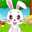 Thỏ cute