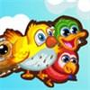 Chim non học bay
