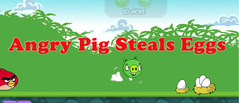 Angry Pig Steals Eggs