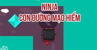 Ninja: Con đường mạo hiểm