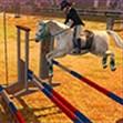 Cưỡi ngựa phiêu lưu
