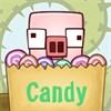 Lợn ăn kẹo