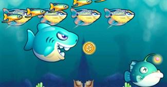 Chú cá tham ăn