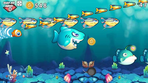 Chơi game Chú cá tham ăn trên GameVui