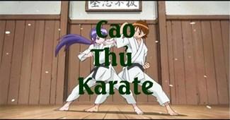 Cao thủ karate