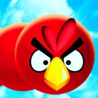 Rắn săn mồi Angry Bird