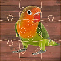 Fancy Birds Puzzle