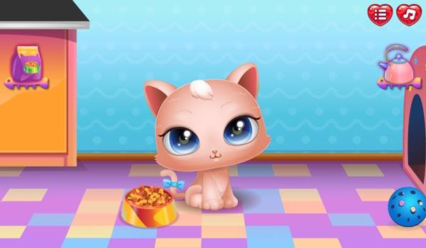 Cho mèo con Kitty ăn