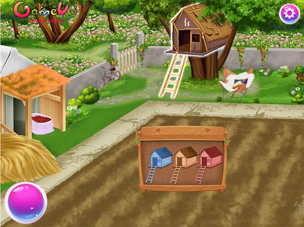 Trang trí khu vườn