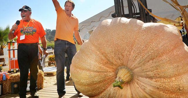 Quả bí ngô to nhất thế giới được ghi nhận trong sách kỷ lục Guinness nặng bao nhiêu kg?
