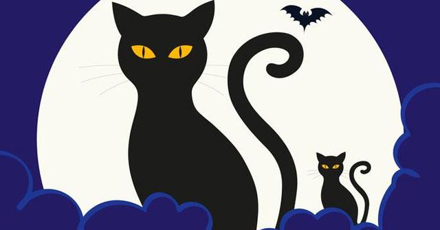 Những con mèo đen trong dịp lễ Halloween được cho là hiện thân của ...