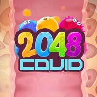 2048 Covid