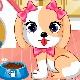 Cute Puppy Daycare