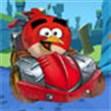 Angry Bird lái ô tô