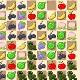 Fruit Puzzle